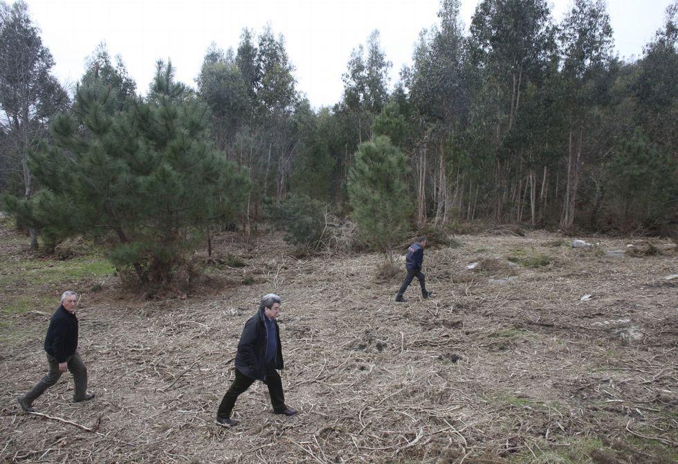 Así se procesan los residuos del incendio de Fandicosta.Comuneros de A Canicouva, en una visita a los terrenos que ofrecieron al Concello.