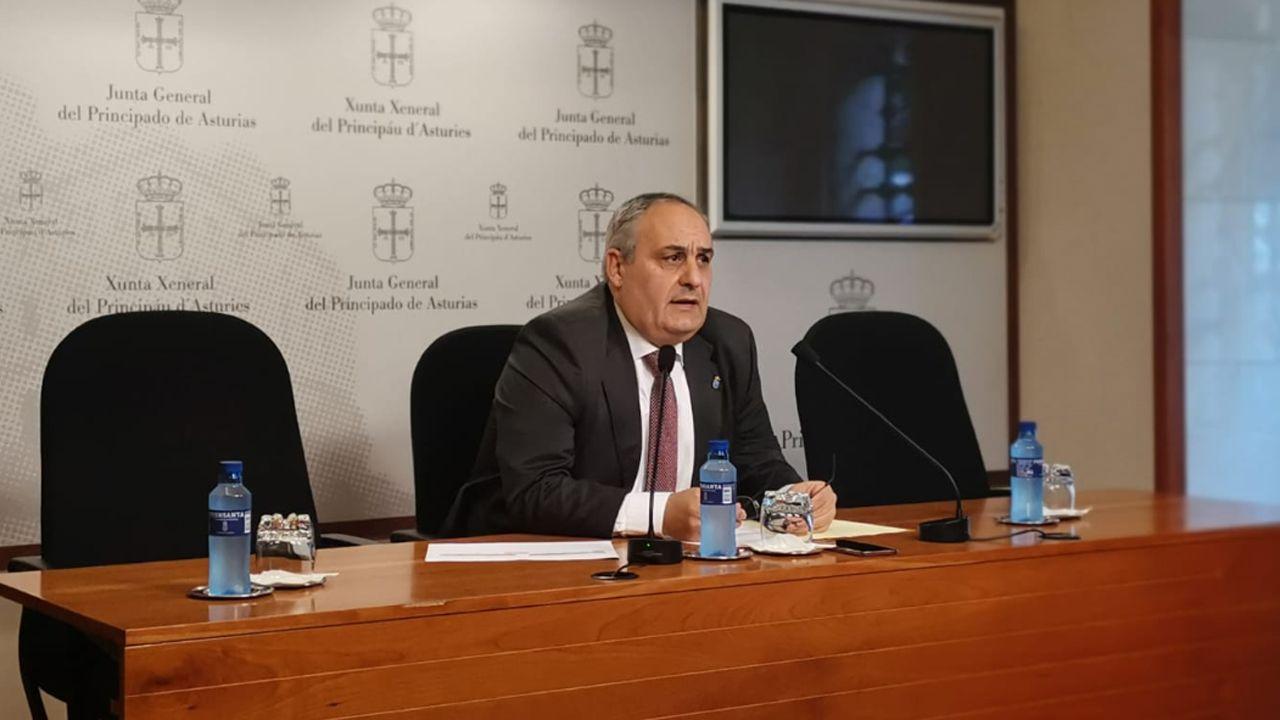 El diputado del PP en la Junta General Javier Brea