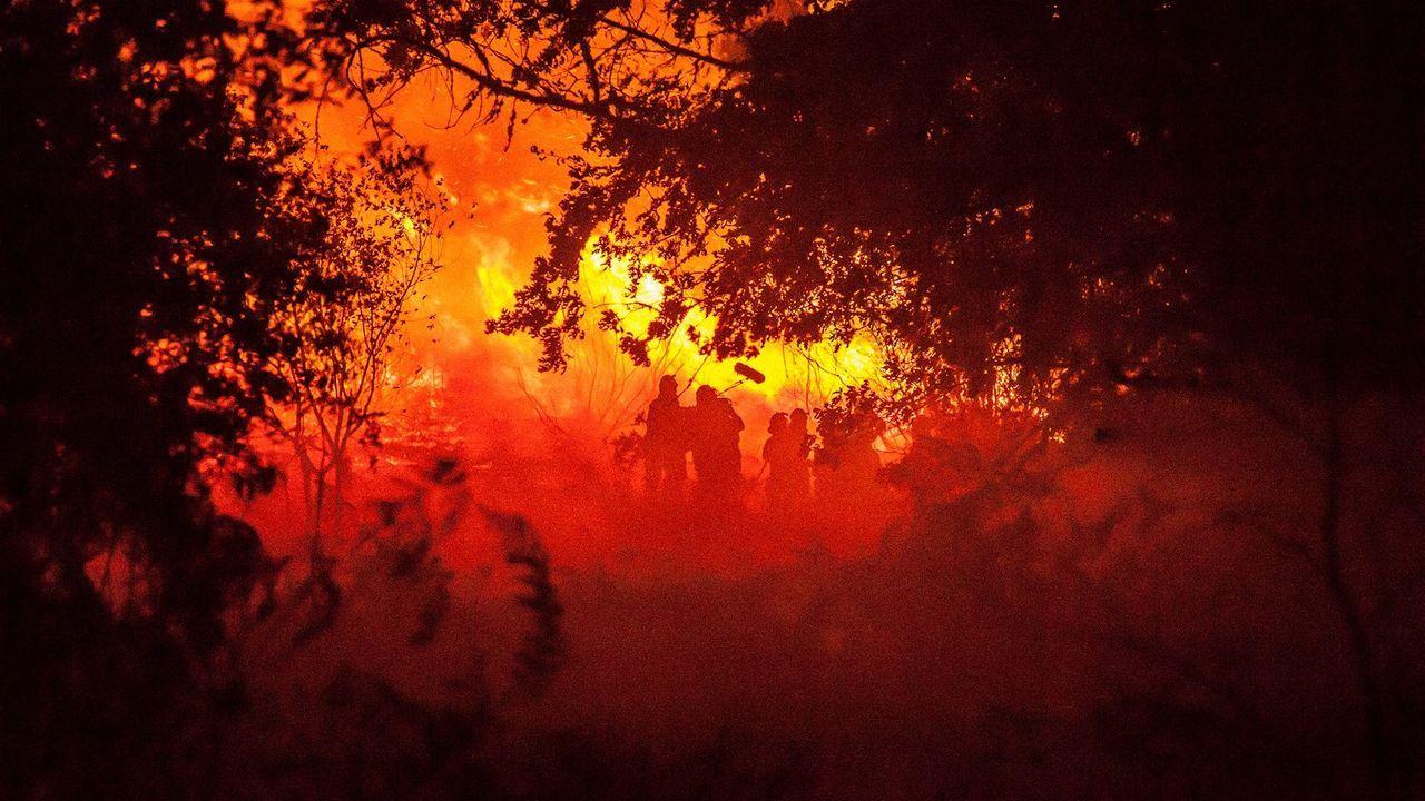 Fotograma del filme del realizador lugués Oliver Laxe «O que arde»