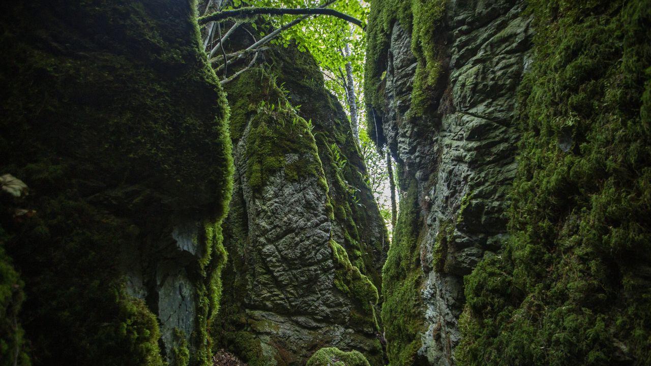 La erosión ha ido modelando un llamativo laberinto kárstico en esta zona de Becerreá