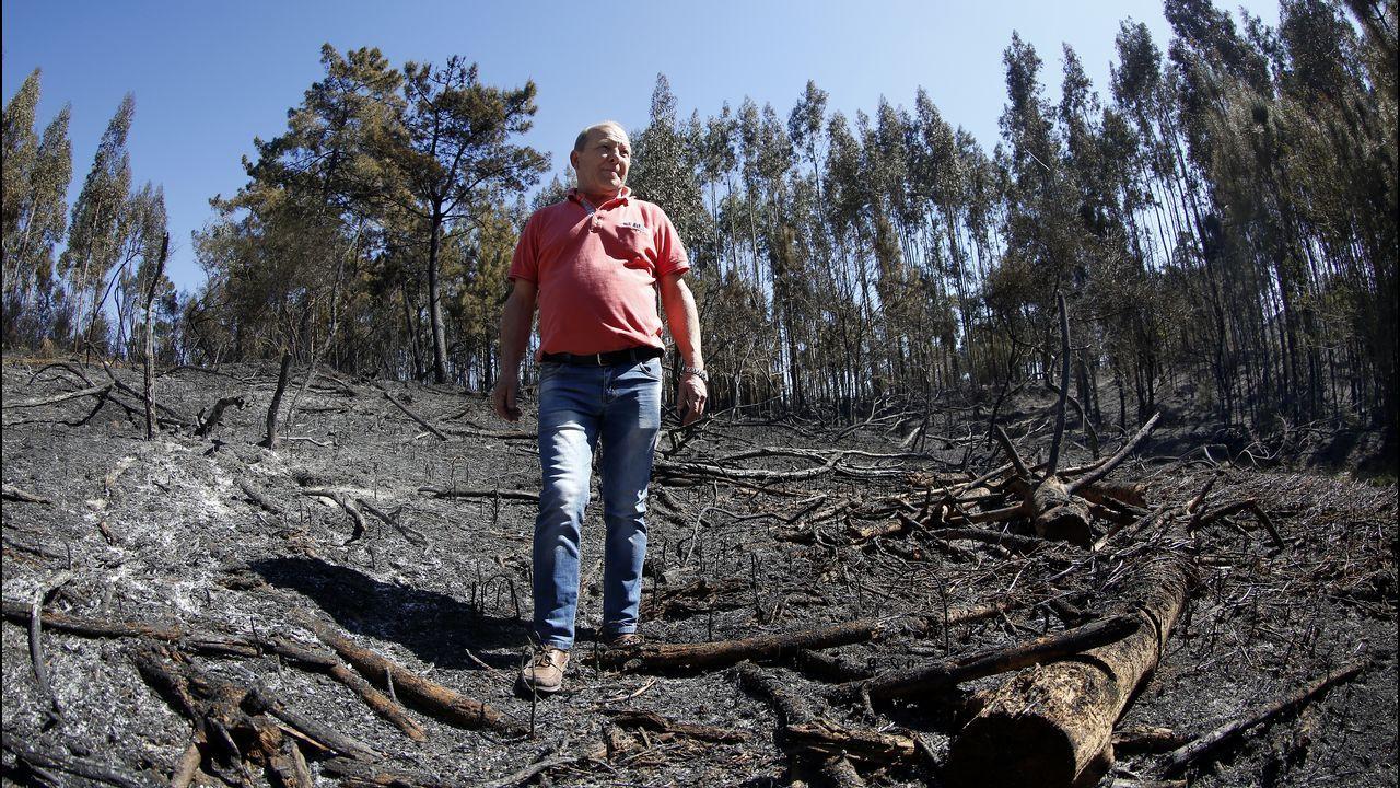 Zona quemada por el fuego de Dodro-Rianxo