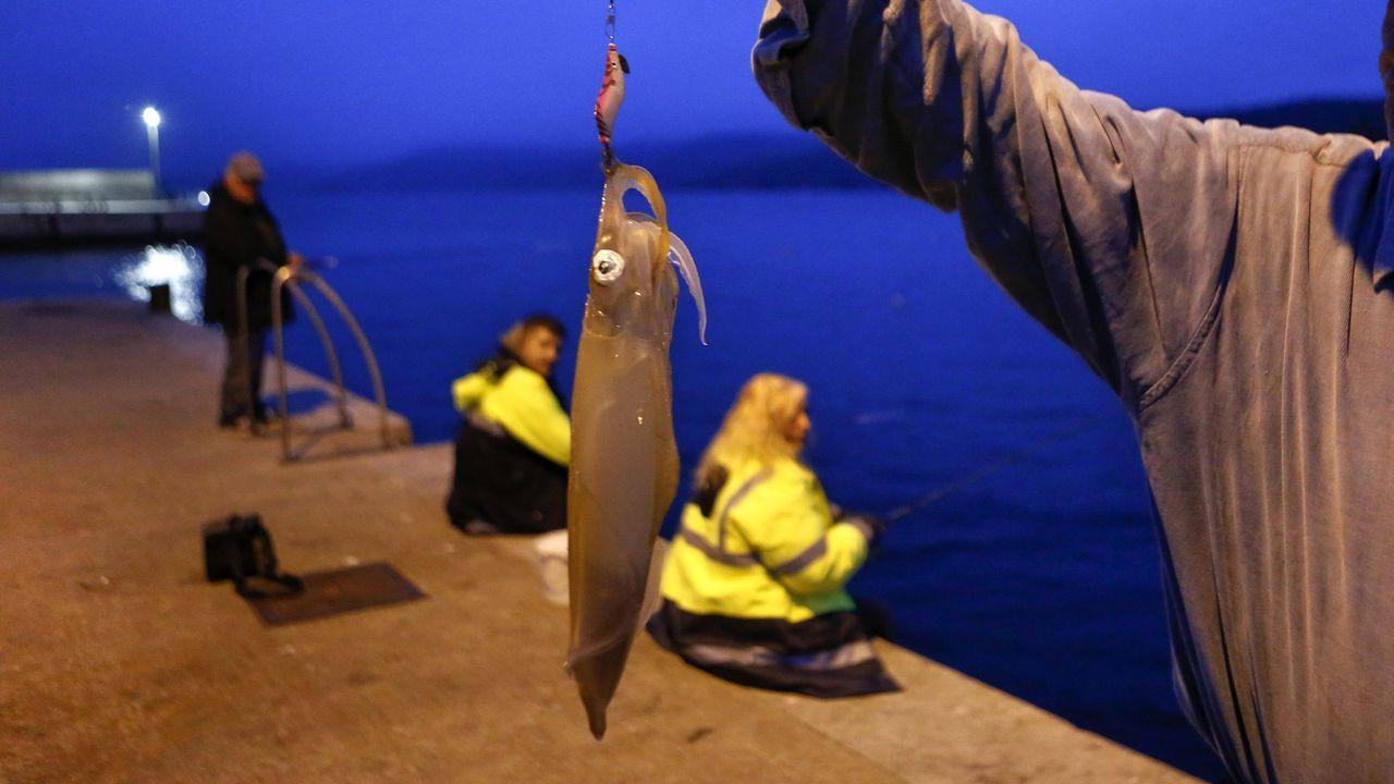 Imagen de archivo de un pescador mostrando un calamar que capturó en un puerto de la Costa da Morte