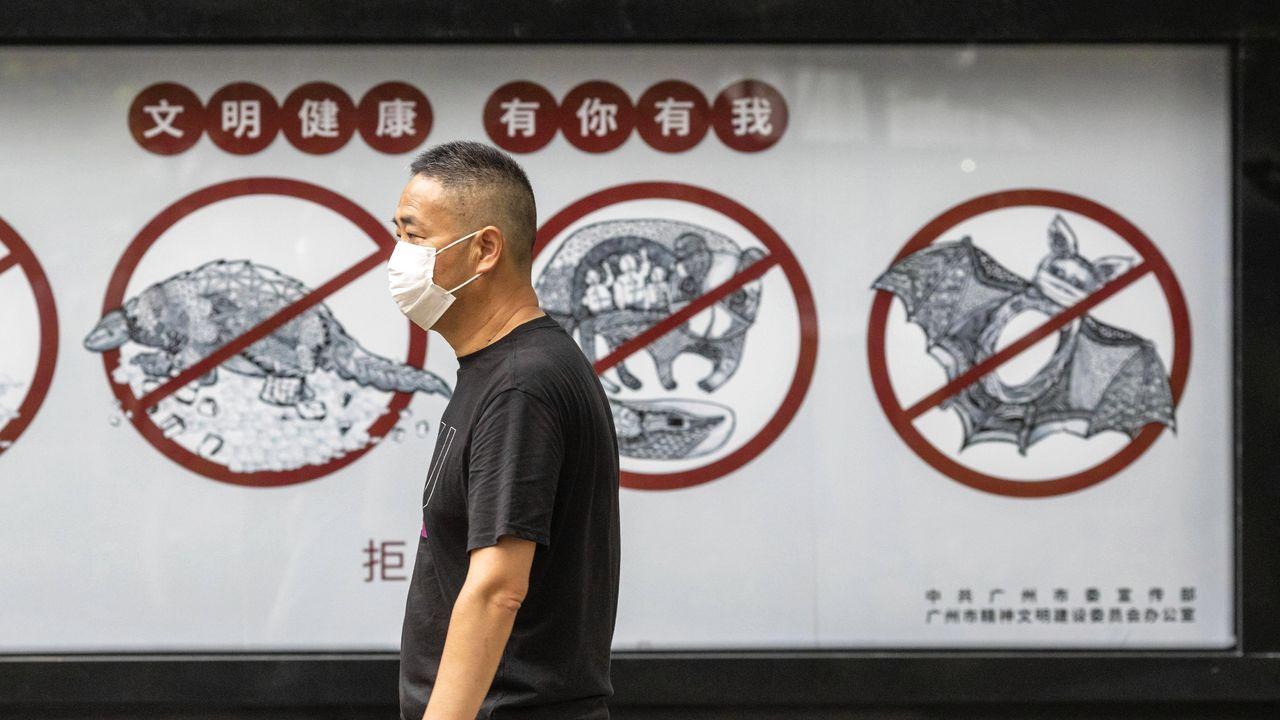 En China hay carteles que advierten de la prohibición de comer animales exóticos