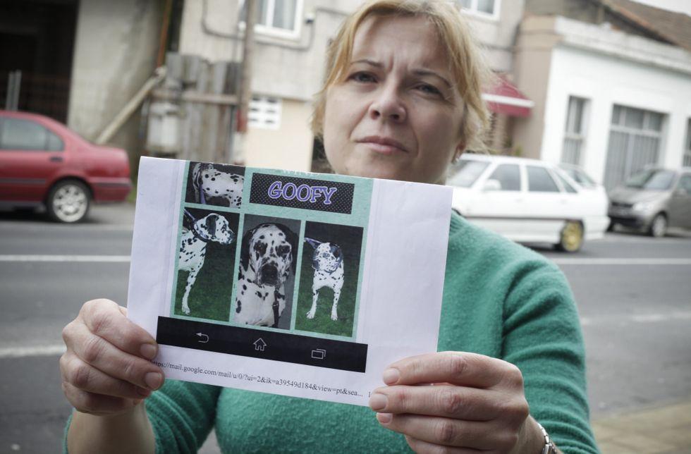 María Jesús muestra el anuncio puesto en Internet por la protectora con su perro.