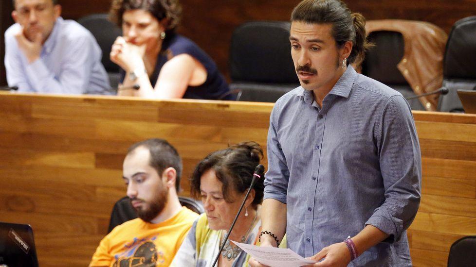 Andres Fernández Vilanova, en el Pleno