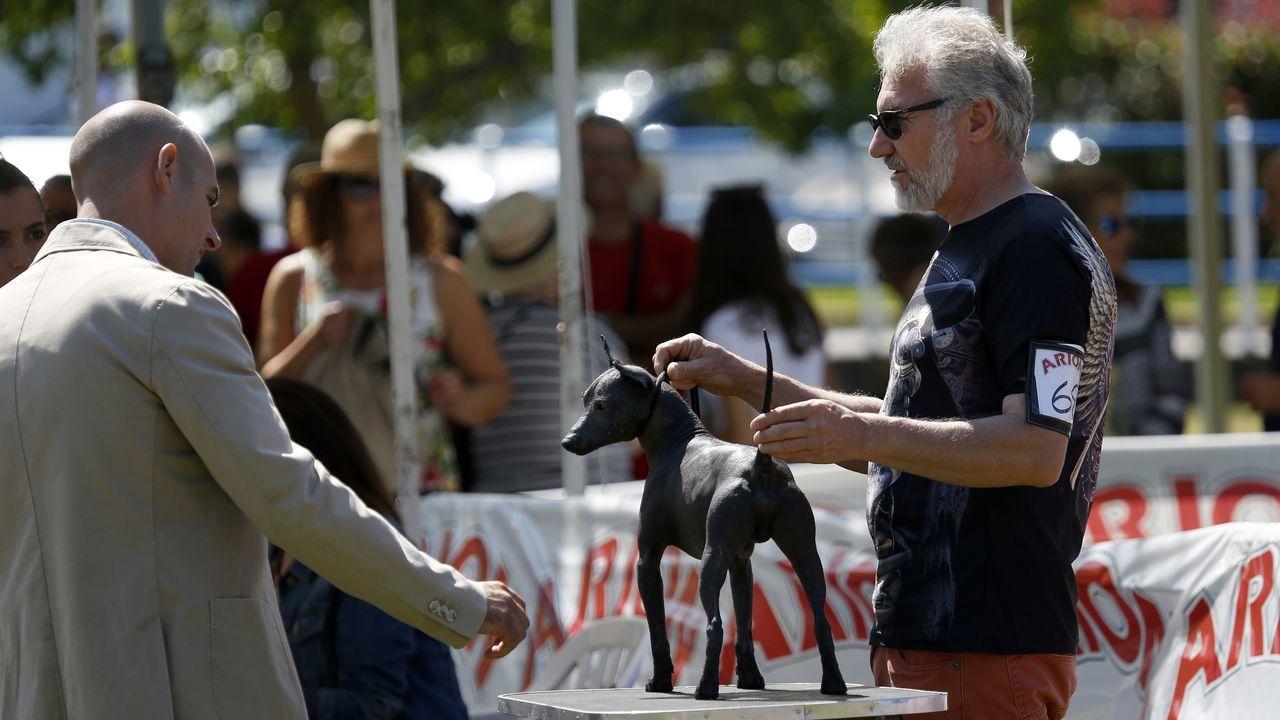 ¡Mira aquí las imágenes del concurso nacional canino celebrado en Porto do Son!