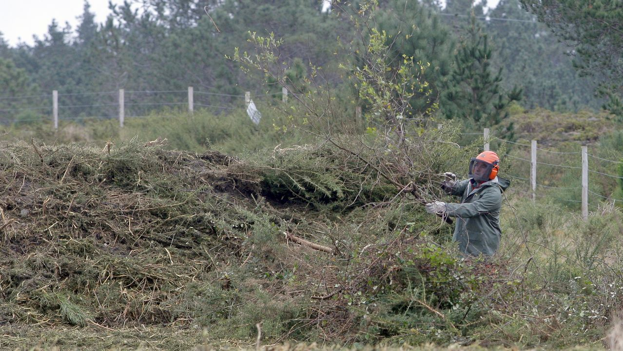 Bombona de camping-gas con la que uno de los detenidos iniciaba incendios forestales