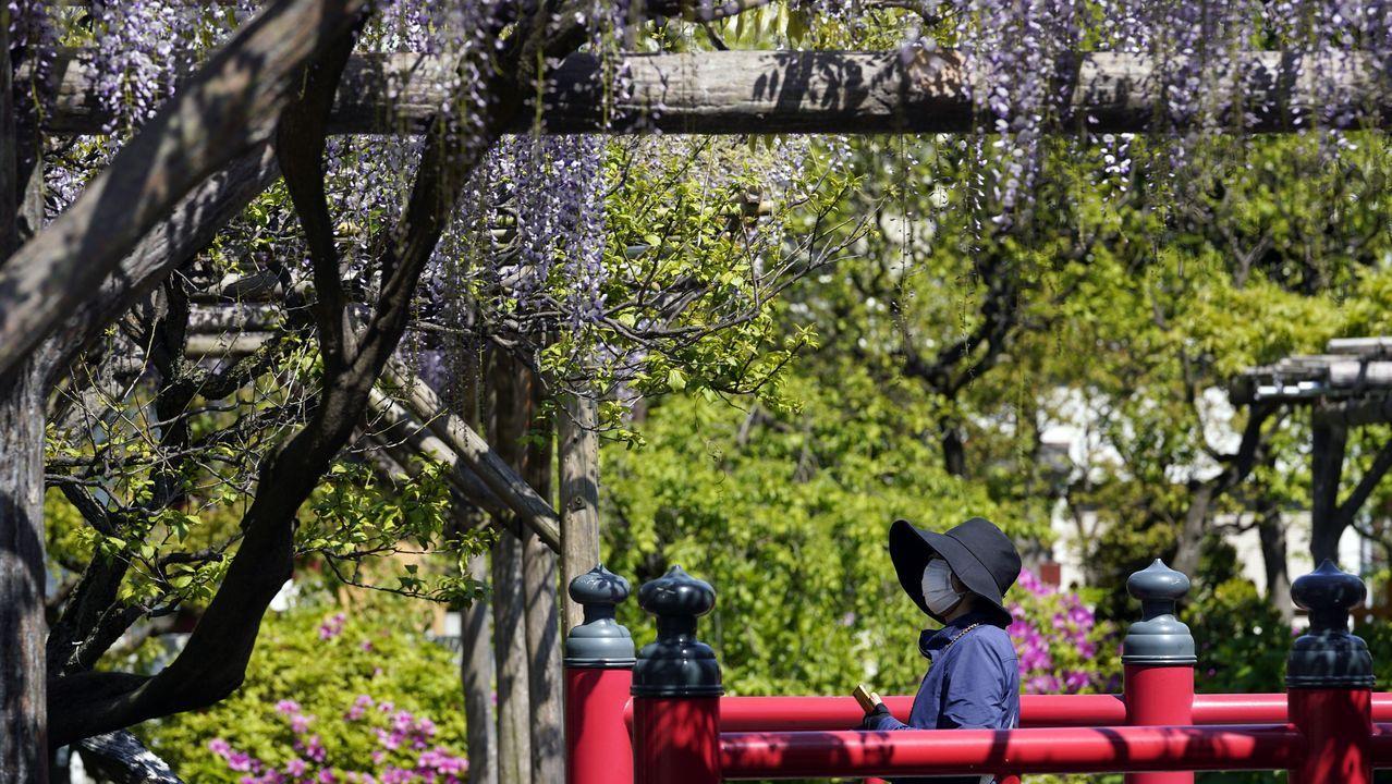 En Japón instan a un confinamiento total durante los próximos doce días