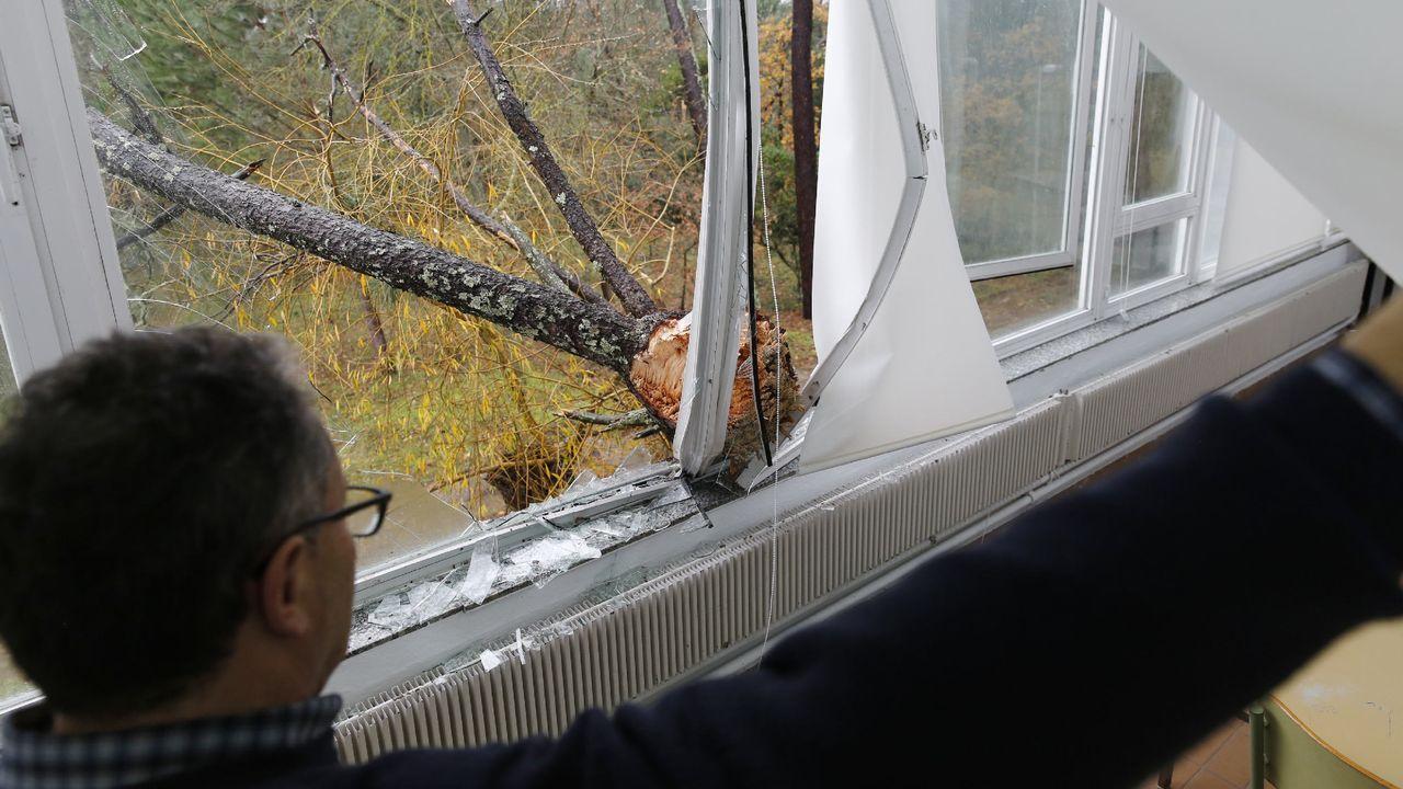 ASÍ HA CASTIGADO EL TEMPORAL A OURENSE.Las comarcas de A Limia y de Verín han sufrido daños en el campo y en edificaciones. En la Universidad Laboral también ha habido destrozos por árboles caídos