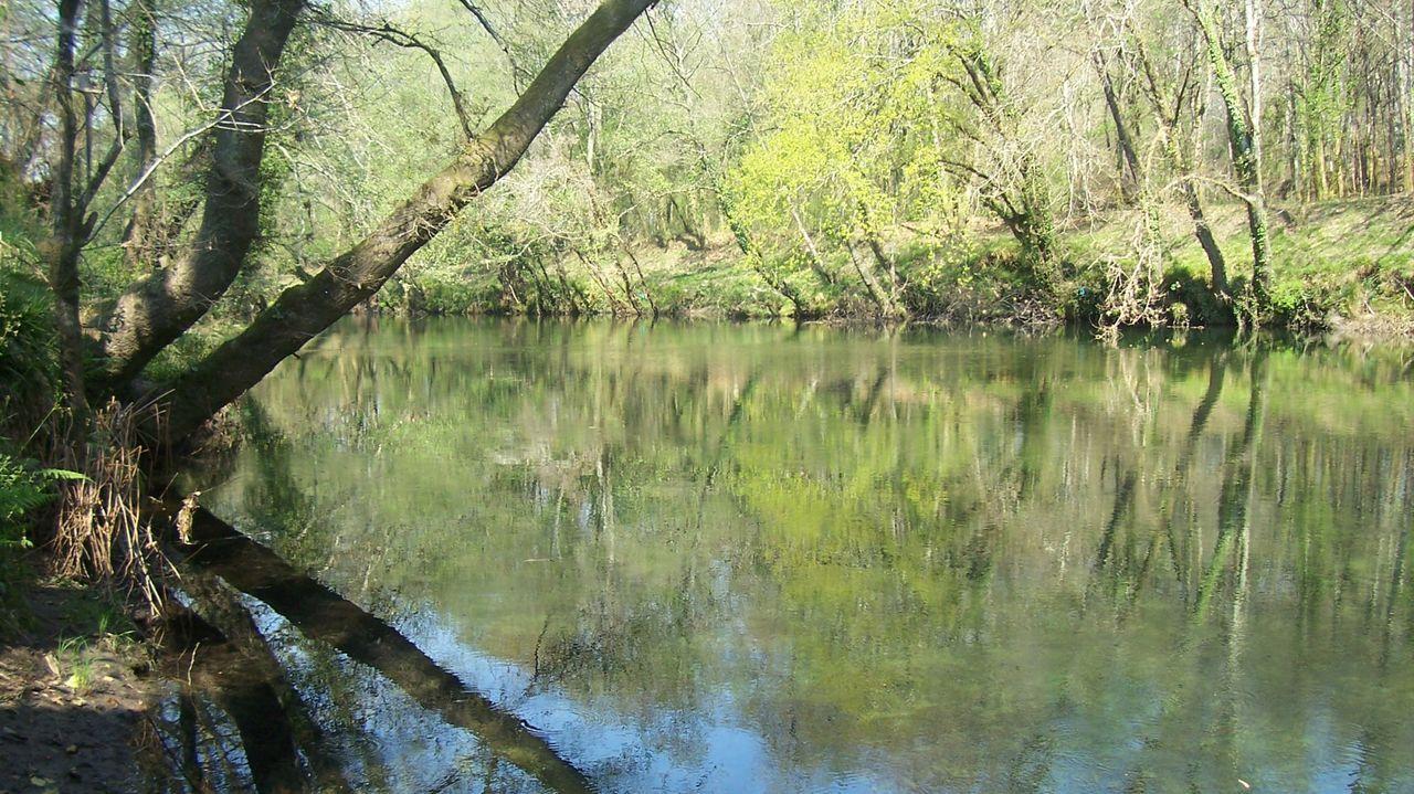 Imagen de archivo del río Tea