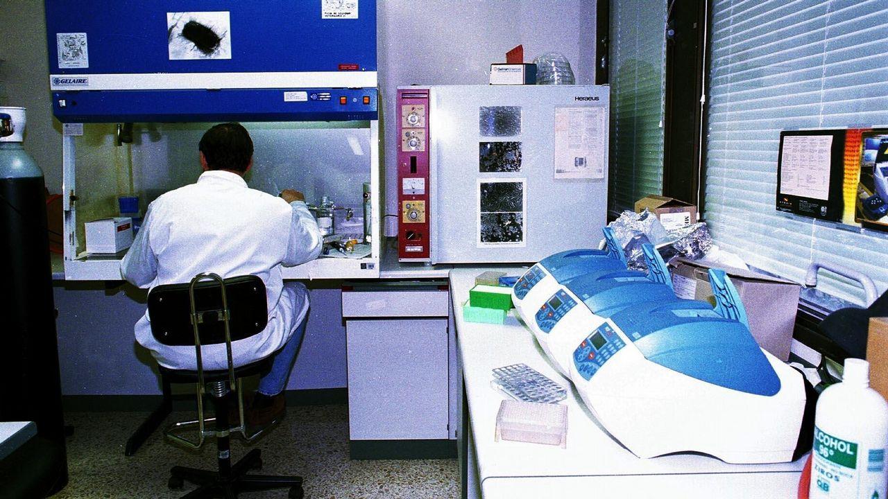 Nace el portal «Forza Breo».La facultad de Veterinaria, en 1998