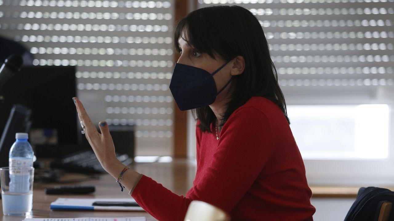 Las fotos del aniversario de Alar Galicia.La conselleira de Emprego, María Jesús Lorenzana, durante la reunión telemática sobre el tercer plan de rescate a empresas y autónomos