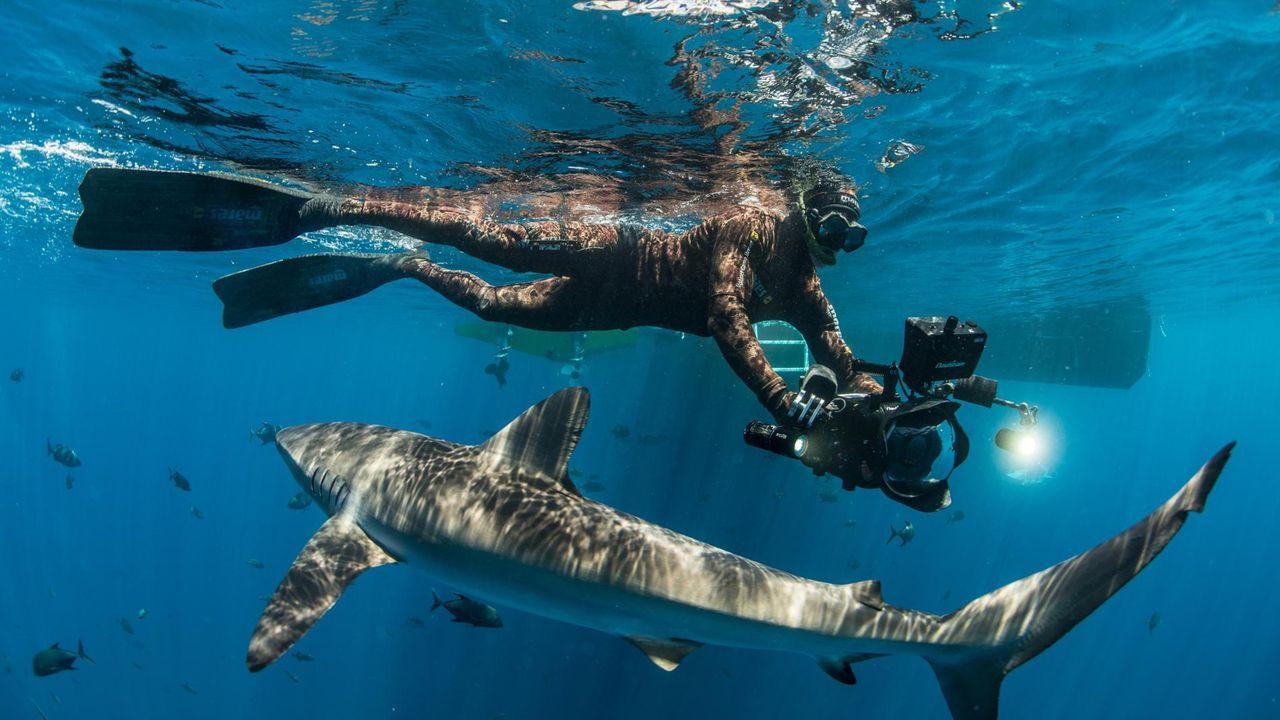 ¿Cómo influye el hombre en lo que ocurre bajo el mar?.Taramundi