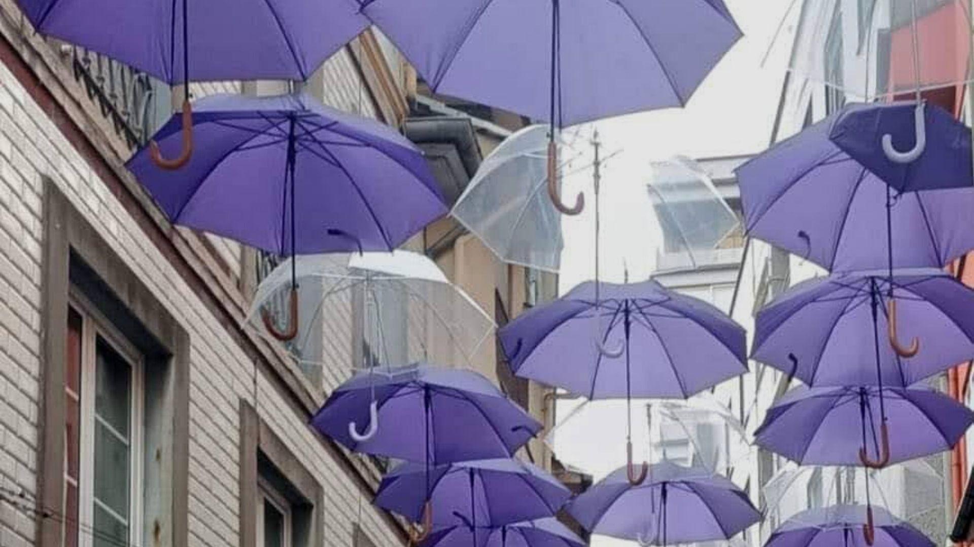 Techo de paraguas morados en la calle Crucero de Luarca, con motivo del 8M, Día Internacional de la Mujer