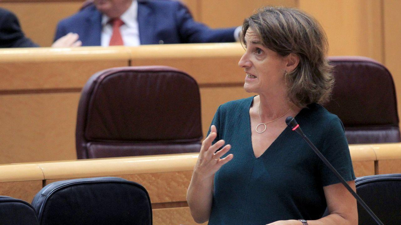 La ministra Ribera en el Senado