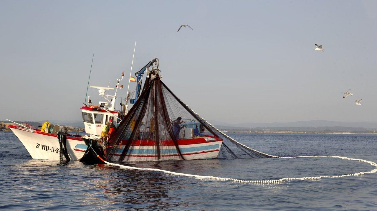 Un «xeiteiro» pescando sardina en la ría de Arousa el pasado verano