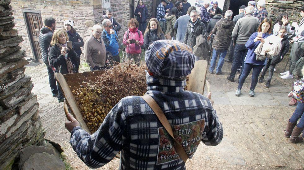 Un vecino de Froxán utiliza un abandoxo, el instrumento que permite acabar de separar la cáscara del fruto de la castaña