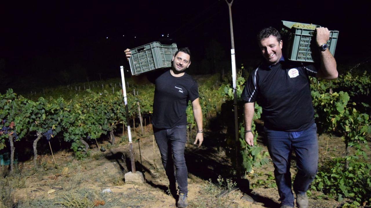 La cosecha de la uva en O Salnés.Los bodegueros Rubén Moure, de Finca Cuarta (a la izquierda) y Pablo González, de Don Cosme (a la derecha) durante la vendimia nocturna realizada el año pasado en la parroquia quiroguesa de Margaride