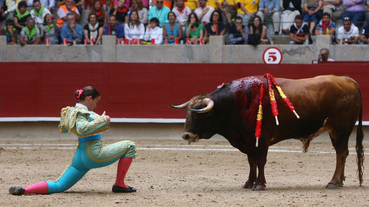 Novillada en la plaza de toros de Pontevedra