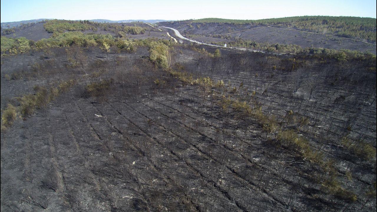 Vista aérea de la superficie quemada por el fuego en Monforte y Pantón