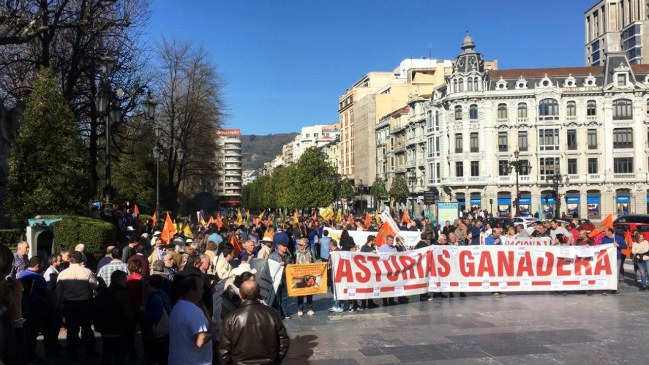 La protesta del campo en Oviedo.Fábrica de Armas de Trubia