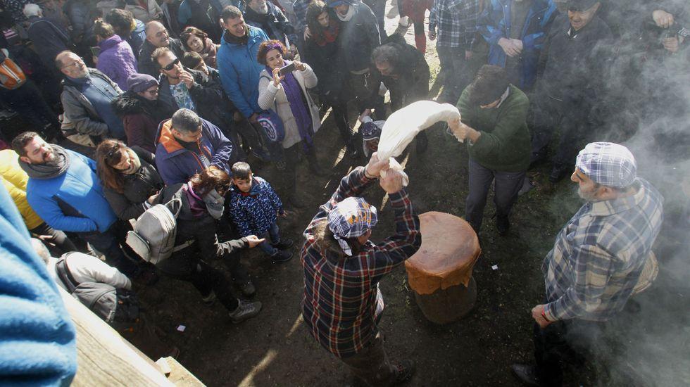Público alrededor de dos voluntarios que sacuden las castañas en un saco