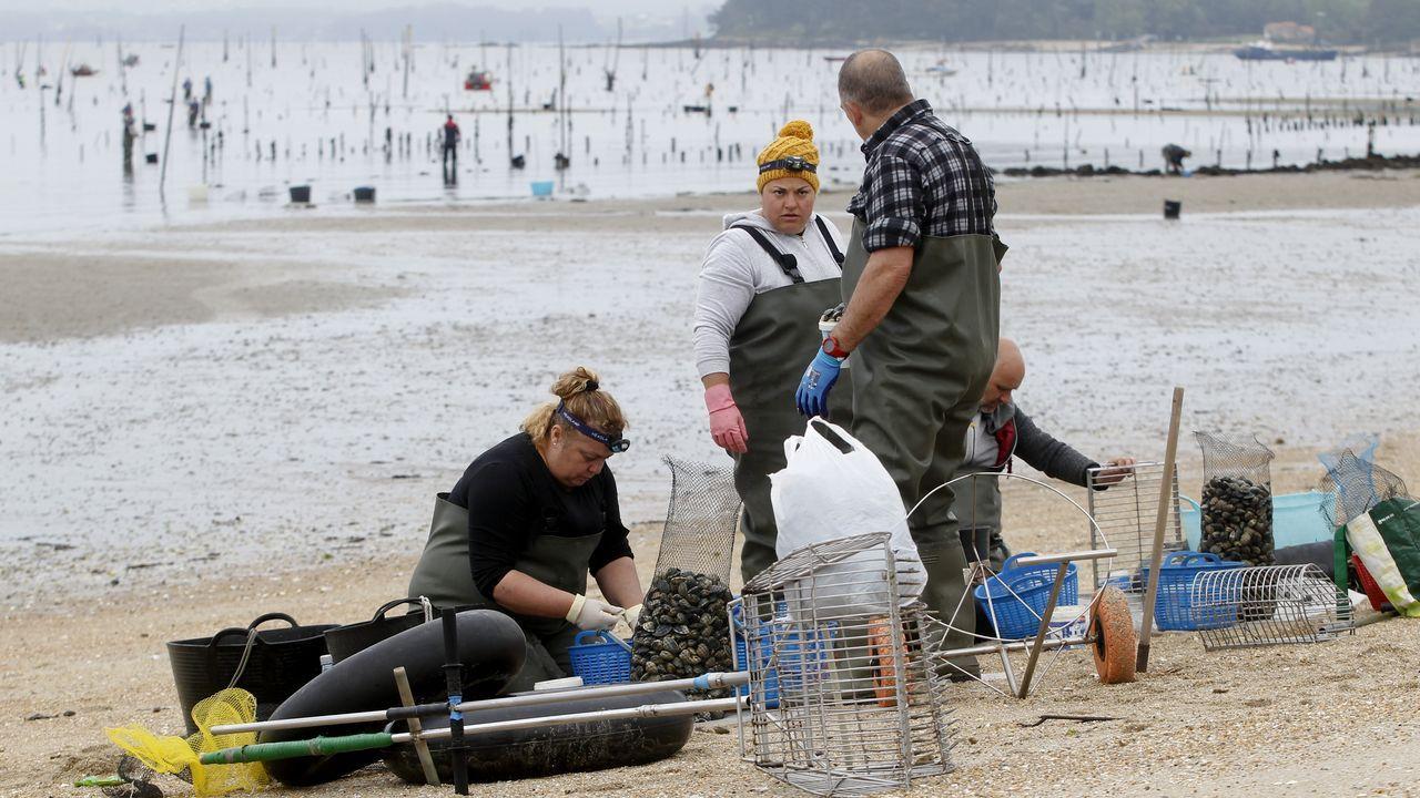 Tripulantes de pesqueros continúan al pie del cañón sin mascarillas