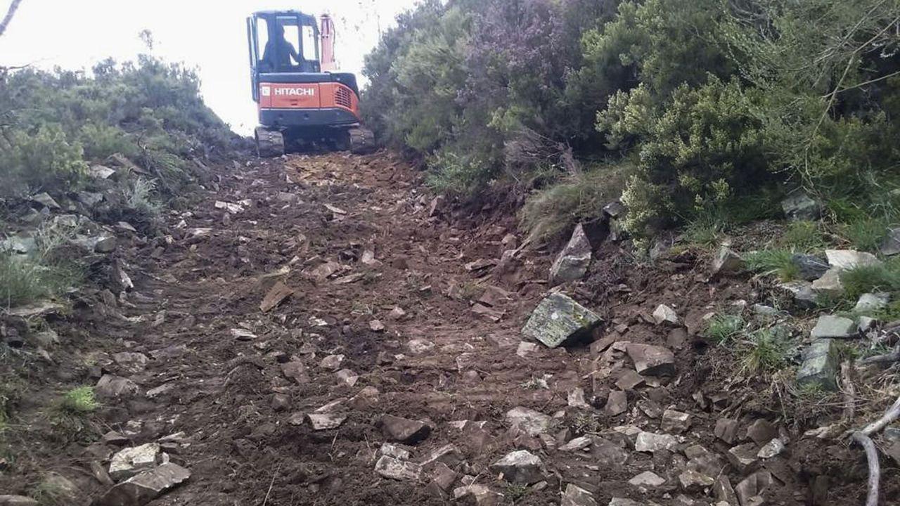 Abren una pista cerca de Deva, en el corazón de la reserva de Os Ancares
