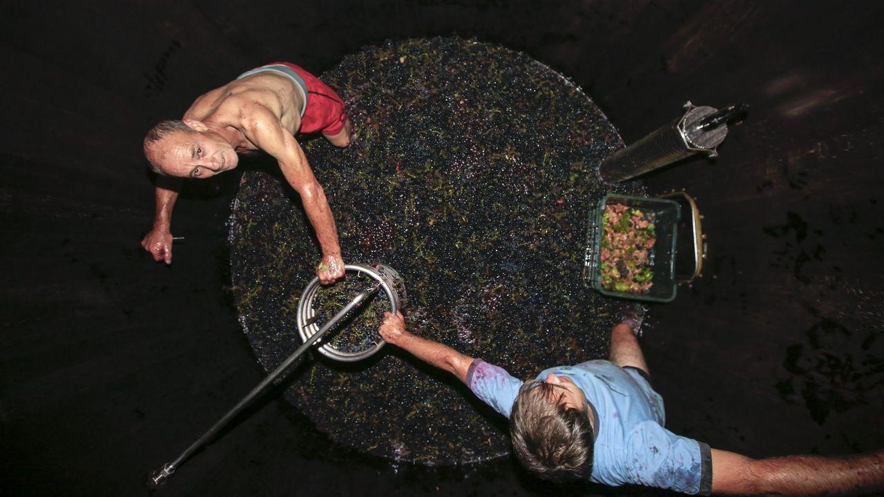 En vinos como Pombeiras se aprovecha el racimo entero en su totalidad