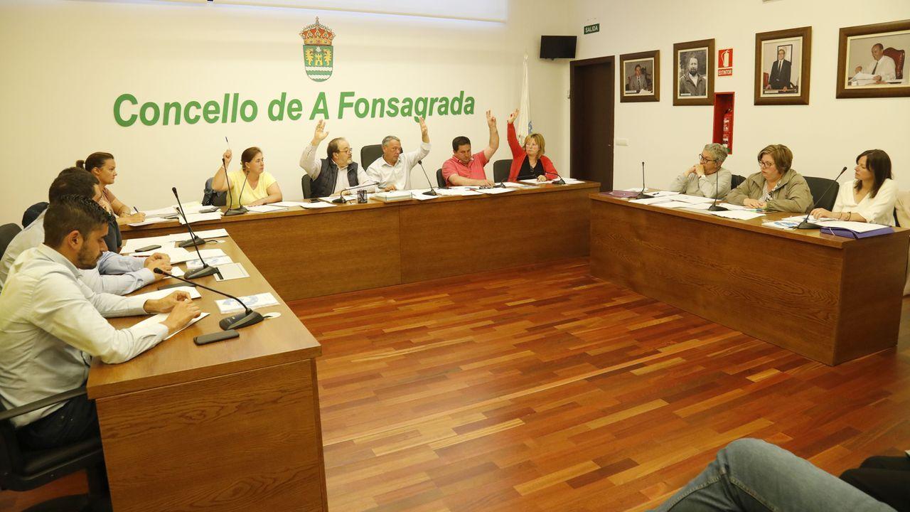El Gobierno dispone de 73 aeronaves para la lucha contra los incendios forestales distribuidas en 47 bases de toda España
