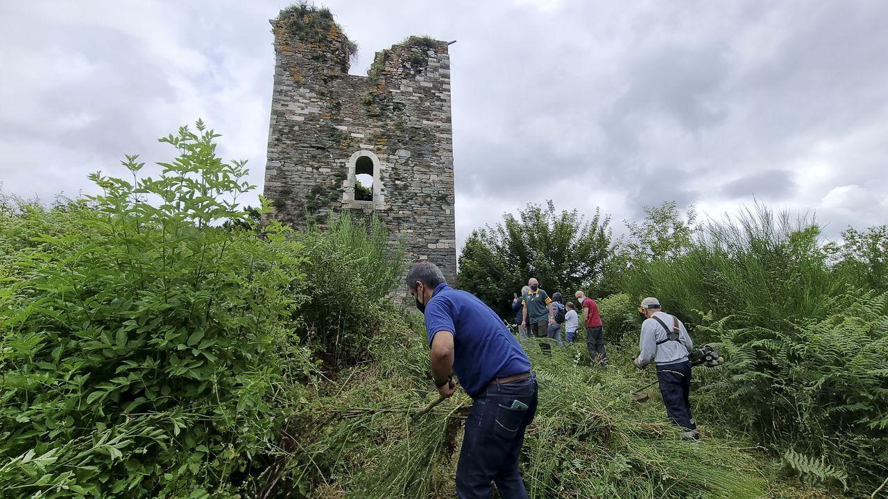 Lugares para visitar en Lugo en un día gris.La actividad forestal está muy presente en diferentes comarcas de Lugo