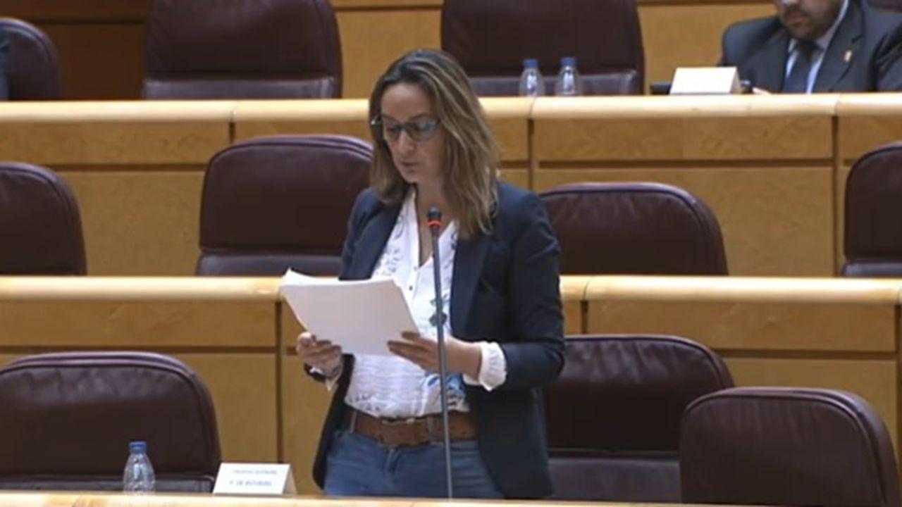 Padre Ángel.La consejera de Presidencia, Rita Camblor en el Senado.