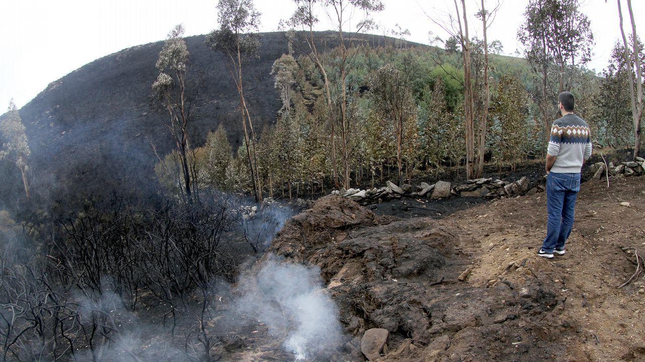 Los efectos del incendio en Boiro