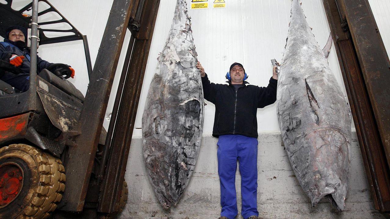 Así capean la pandemia las conservas gallegas de productos del mar.Benito Vizoso Vila, actual administrador del grupo Andrés Vizoso, el hijo menor de Andrés Vizoso Calvo