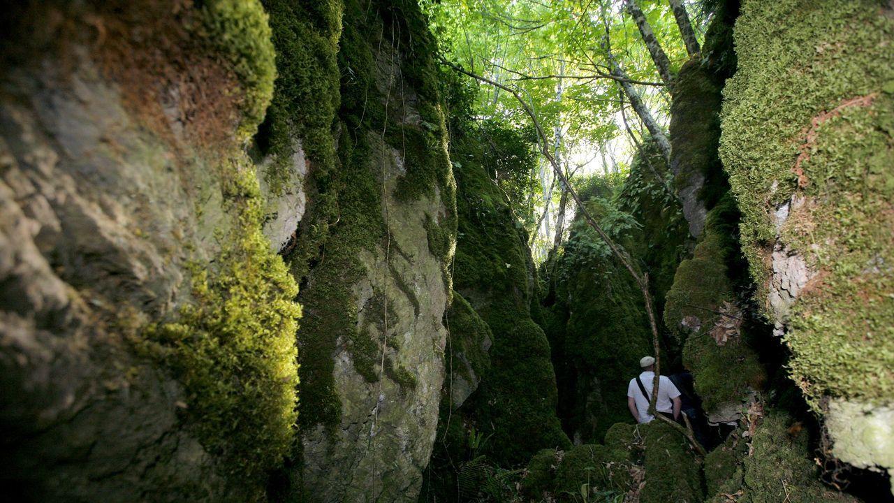 Bosque dos Grobos, en Becerreá. Una bienvenida a Os Ancares cincelada en piedra caliza