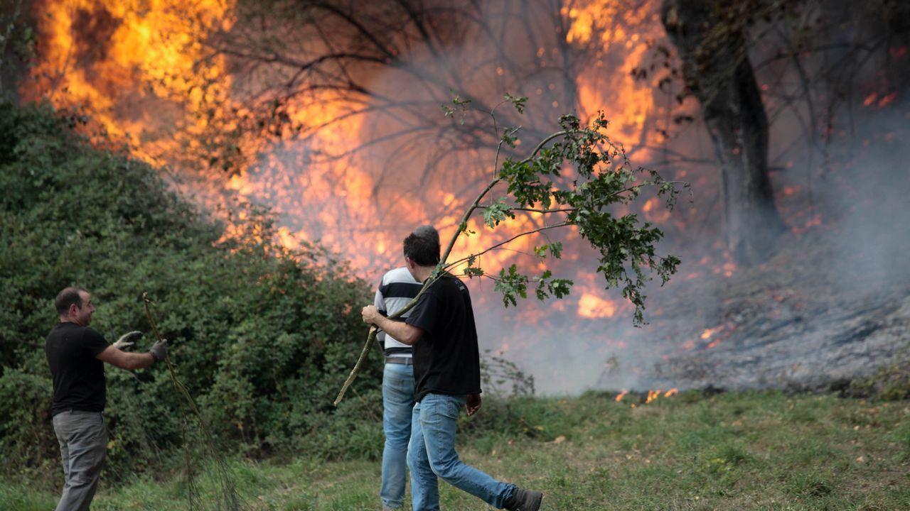 Imágenes de los incendios en la comarca de Lemos
