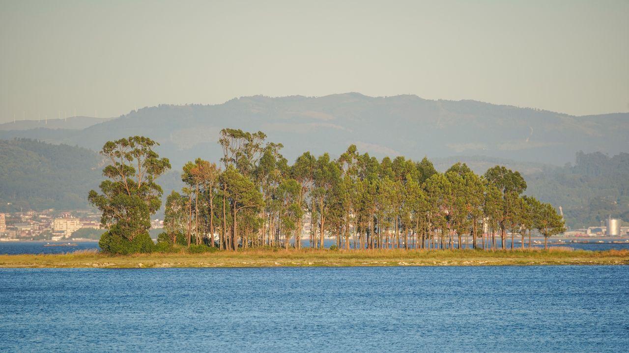 Desde la playa boirense de Mañóns es posible llegar, cuando la marea está baja, a la isla Ostreira