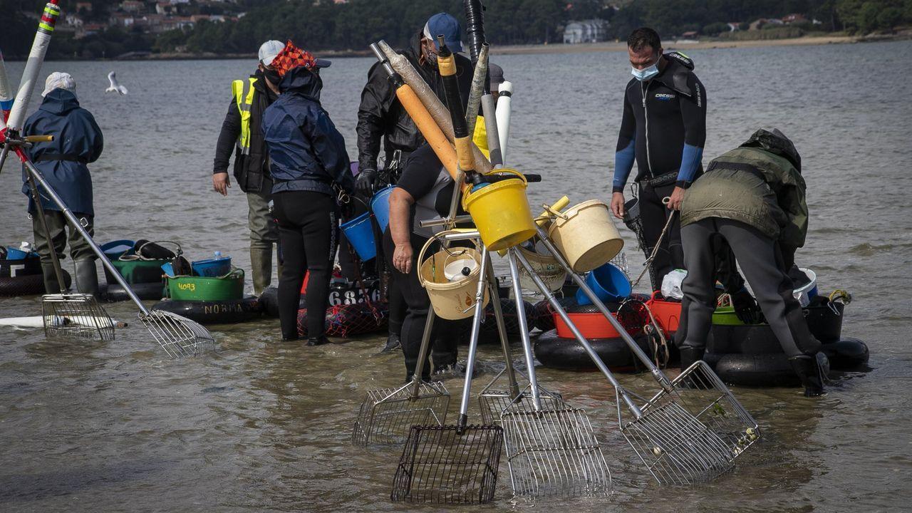 Marisco muerto cubre las playas de Rianxo.Los técnicos Francisco Liñares, Alfonso Salgado y Manuel Liñares, y Renata y Manuel Lema