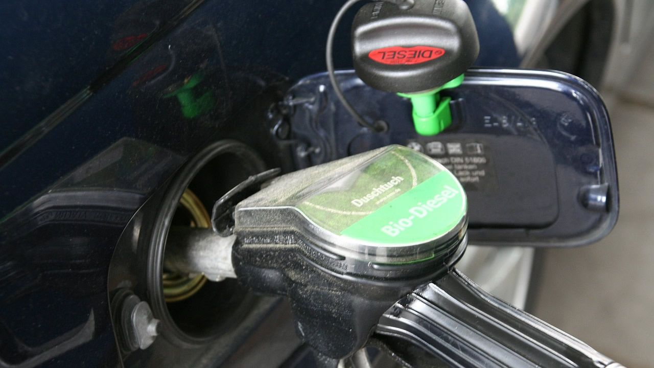 El aceite de palma, también en el depósito de tu coche.En este accidente múltiple ocurrido en la A8 en el 2014 falleció atropellada una enfermera que salió de su vehículo para asistir a los heridos