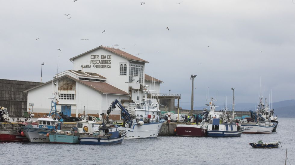 Vecinos de Corme recuperaron la zona de O Perillán.Espectáculo Saaabor!: podrá verse en Dombate, Cabana