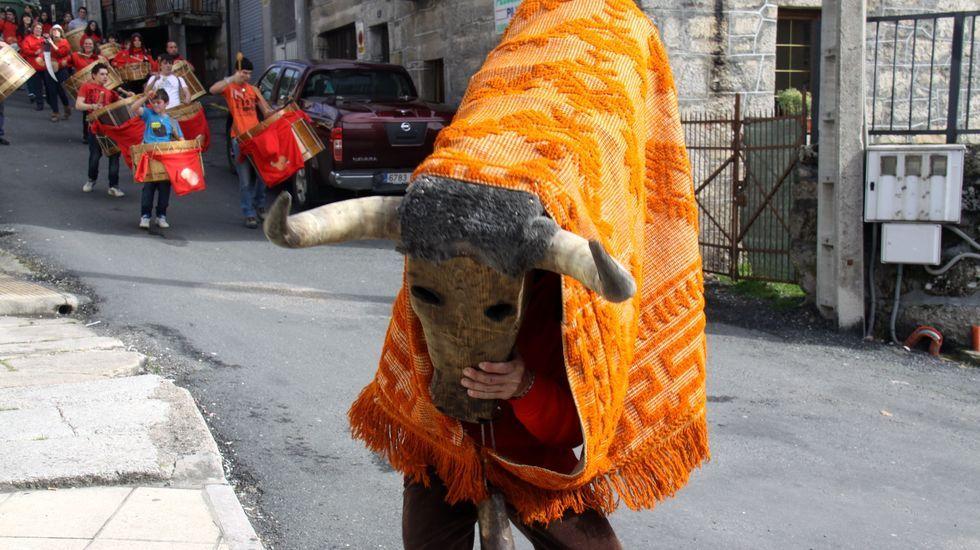 Los vecinos de Verín protestan ante el Parlamento por el cierre del paritorio.Una de las figuras del entroido de A Veiga, el toro