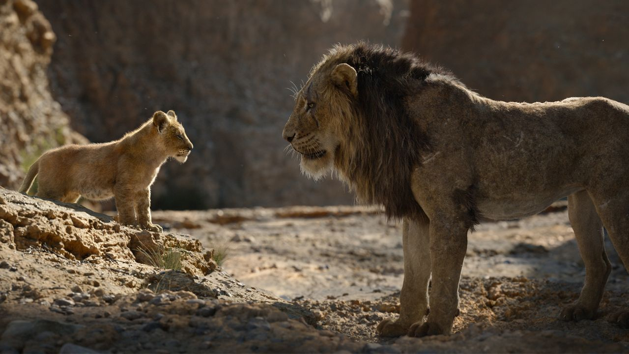 Imagen de «El Rey león»