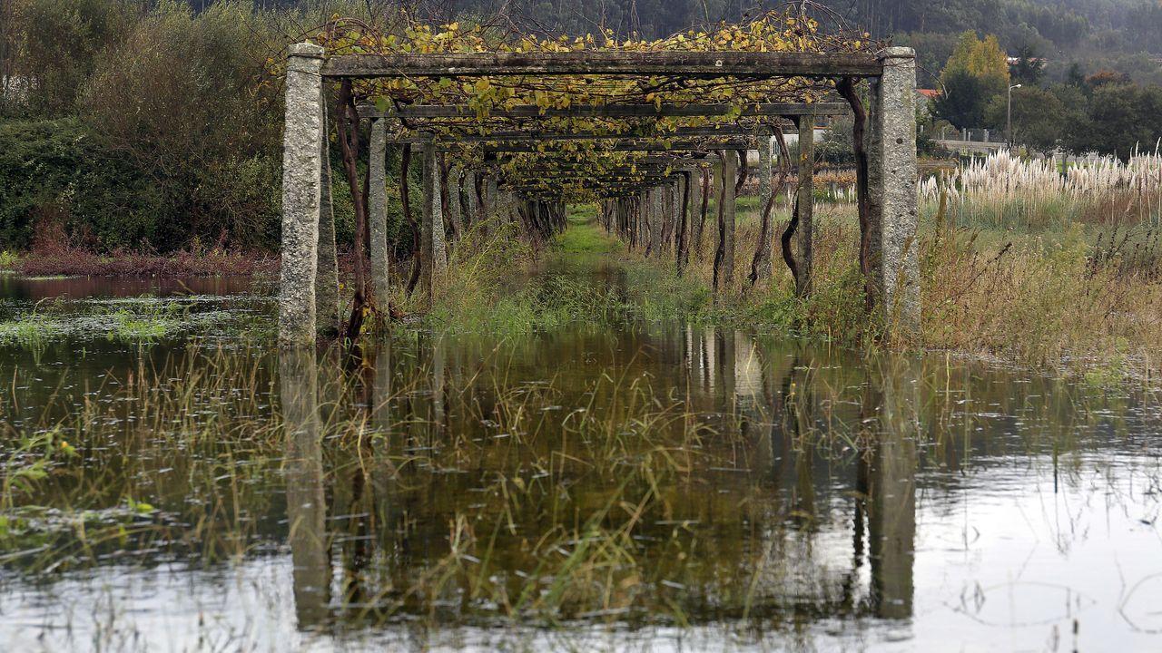 El río Umia al límite de su capacidad a su paso por Baión
