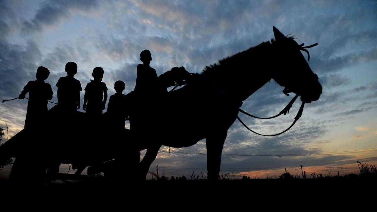 Un grupo de niños sobre un carro tirado por un cabalo en Jalandhar (India)