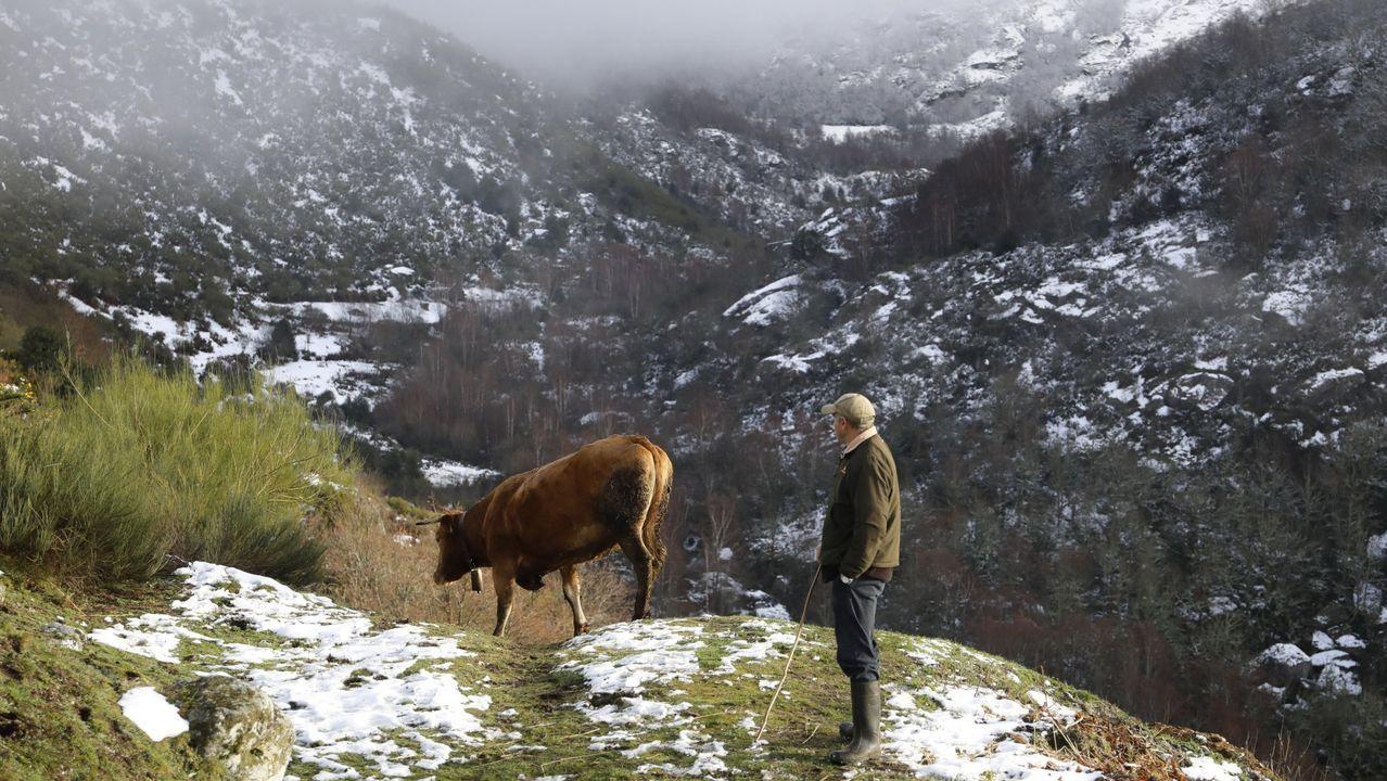 Feijoo inaugura el comienzo del curso universitario en Vigo.Despoblación y demografía, uno de los retos de futuro en la provincia. En la imagen un vecino de Piornedo, Cervantes