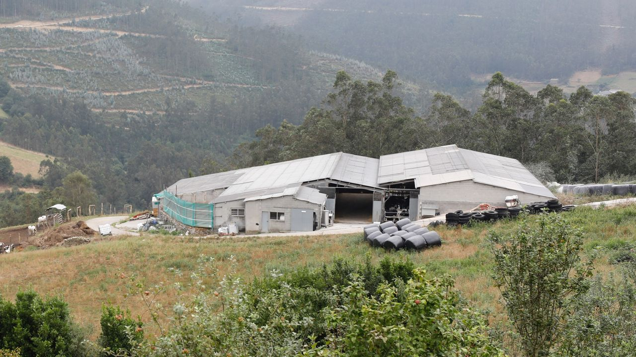 La granja está situada en la parroquia de Guiar, en el municipio de asturiano Vegadeo