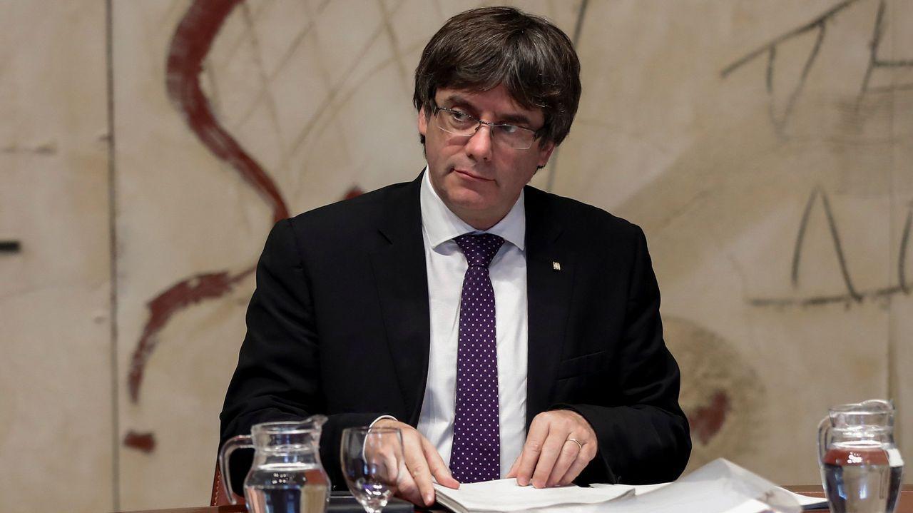 Árboles a la carta para preparar Galicia ante el cambio climático.Carles Puigdemont