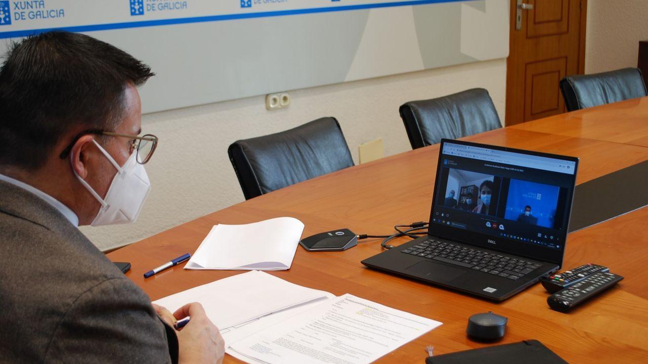 El conselleiro de Medio Rural, en una reunión telemática con la alcaldesa de Rairiz de Veiga