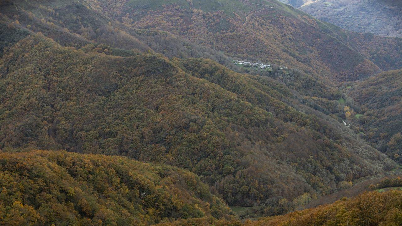 La Devesa da Rogueira, conocido bosque de O Courel, está inscrita en el registro