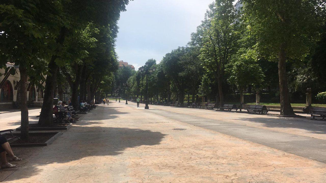 El paseo del Bombé, sin reparto de bollo, el Martes de Campo